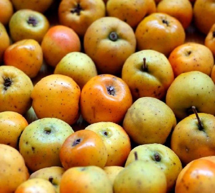 Tejocote Fruta