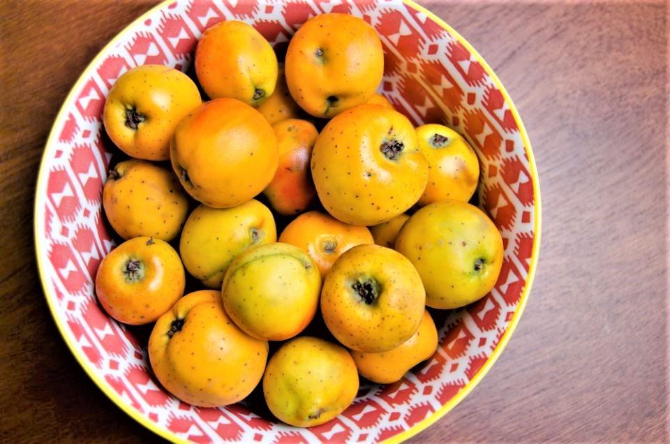 Fruto del Arbol de Tejocote